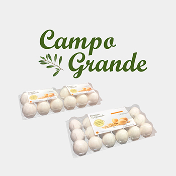 Huevos extra frescos campo grande